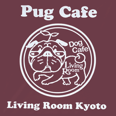パグカフェの存在!パグの数は10匹以上〜!これも犬カフェ?