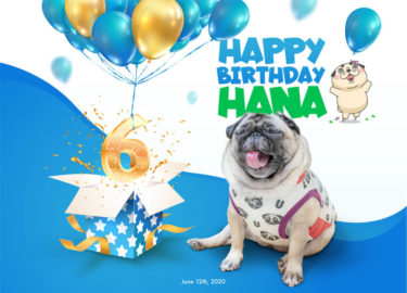 Happy Birthday HANA!!